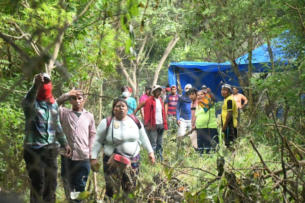 Gobierno Municipal de Santa Cruz de la Sierra denuncia : Loteadores  destrozaron parte del jardín botánico, pero la Alcaldía frenó la invasión -  Notiboliviarural